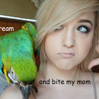 WHAT IT'S LIKE TO OWN A MACAW   Brenna Neal