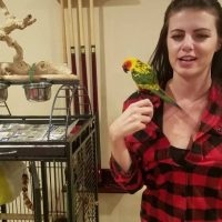 This Jenday Conure has a great cage set up | PARRONT TIP TUESDAY