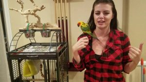This Jenday Conure has a great cage set up   PARRONT TIP TUESDAY